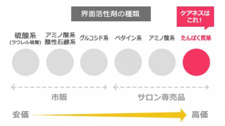 ケアネス資料3